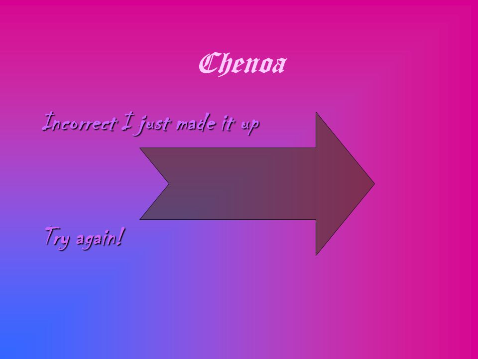 Chenoa Incorrect I just made it up Try again!