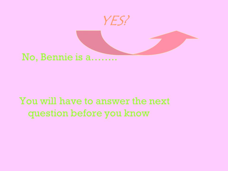 YES? No, Bennie is a…….. You will have to answer the next question before you know
