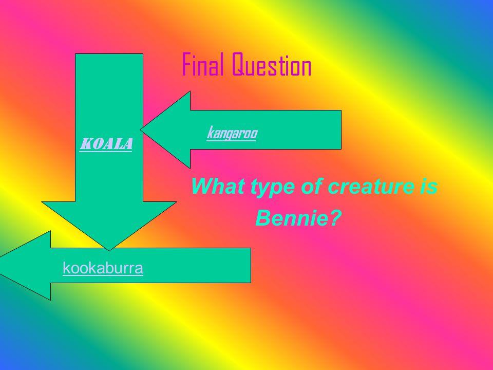 Final Question What type of creature is Bennie? kookaburra koala kangaroo