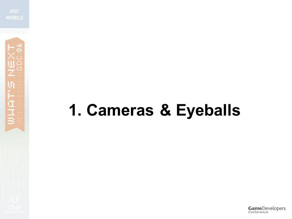 1. Cameras & Eyeballs