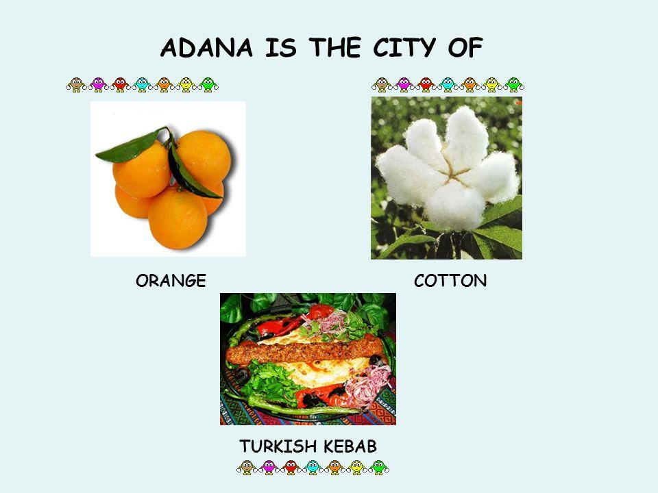 ADANA IS THE CITY OF ORANGECOTTON TURKISH KEBAB