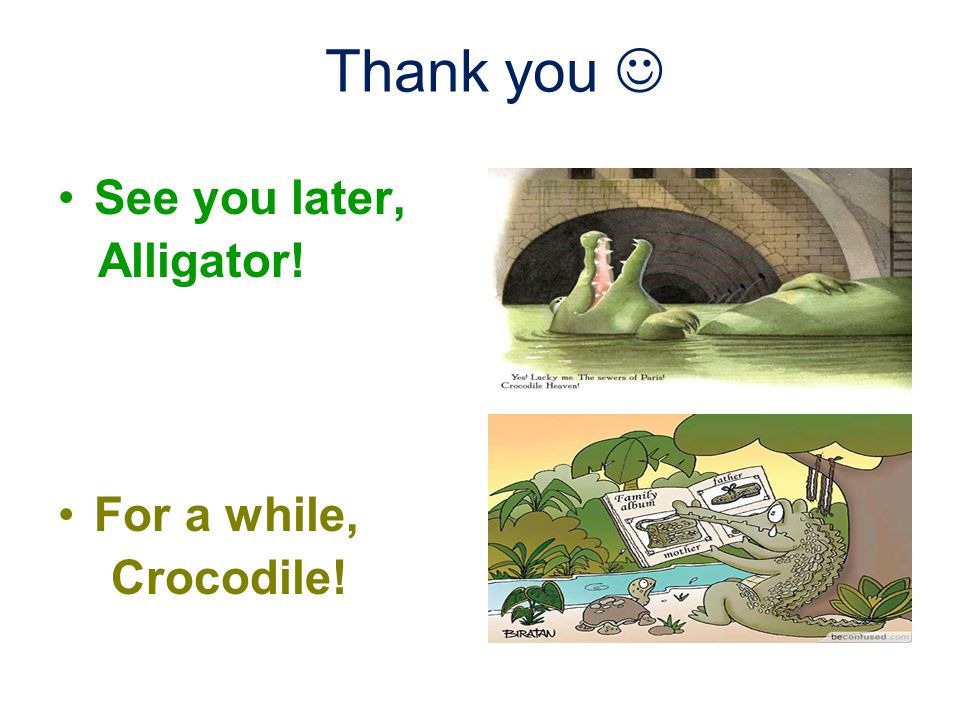 Thank you See you later, Alligator! For a while, Crocodile!