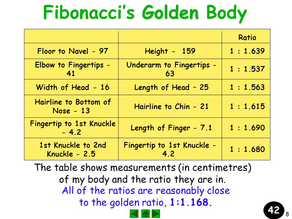 8 Golden Fibonacci's Golden Body Ratio Floor to Navel - 97Height - 159 1 : 1.639 Elbow to Fingertips - 41 Underarm to Fingertips - 63 1 : 1.537 Width