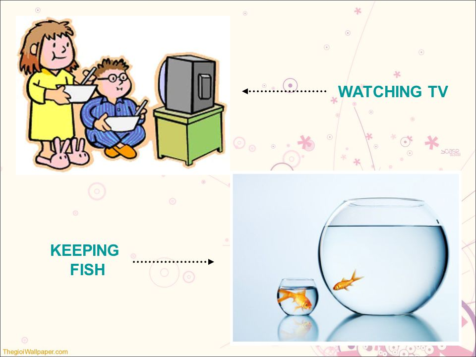 WATCHING TV KEEPING FISH