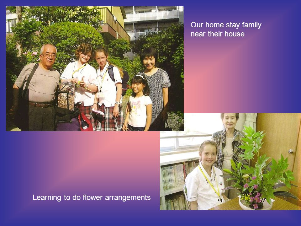 Learning to do flower arrangements Our home stay family near their house
