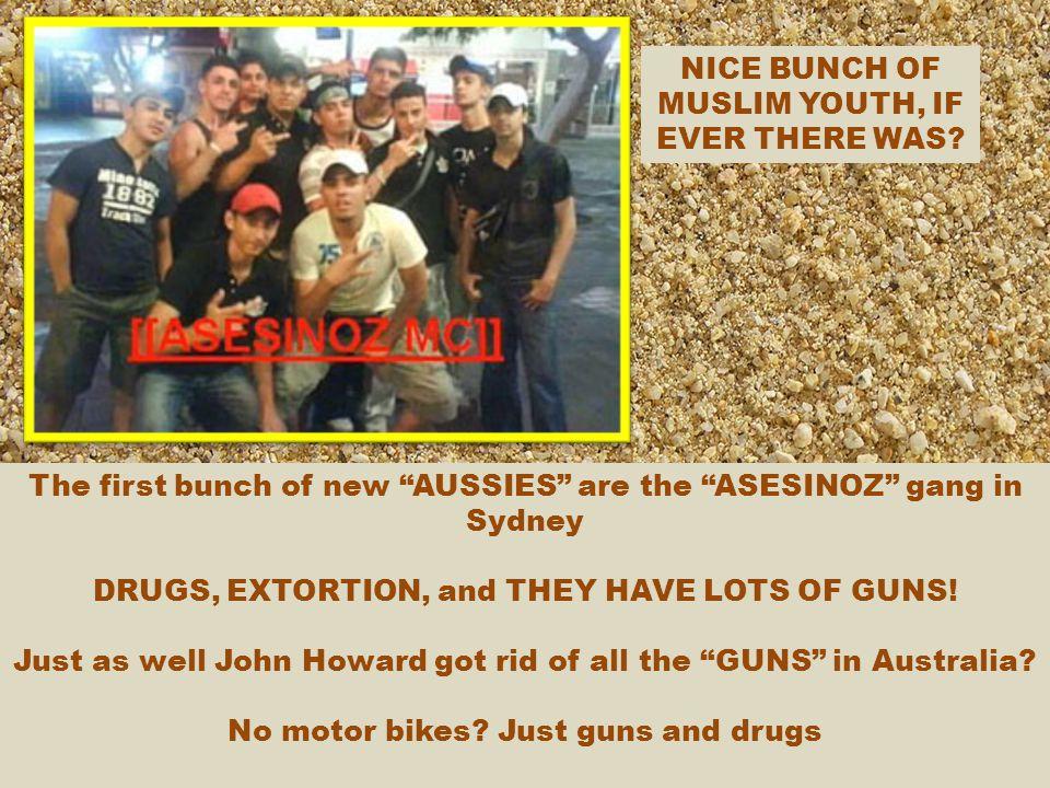 AUSTRALIAN CRIMINAL GANGS.