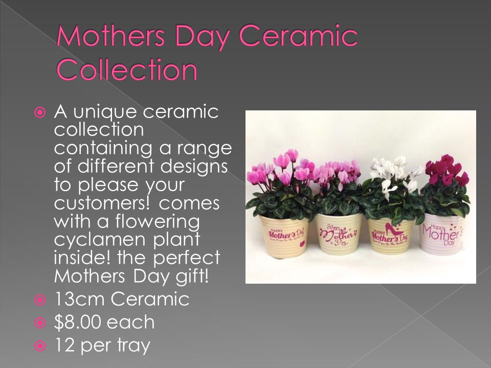  A unique ceramic collection containing a range of different designs to please your customers.