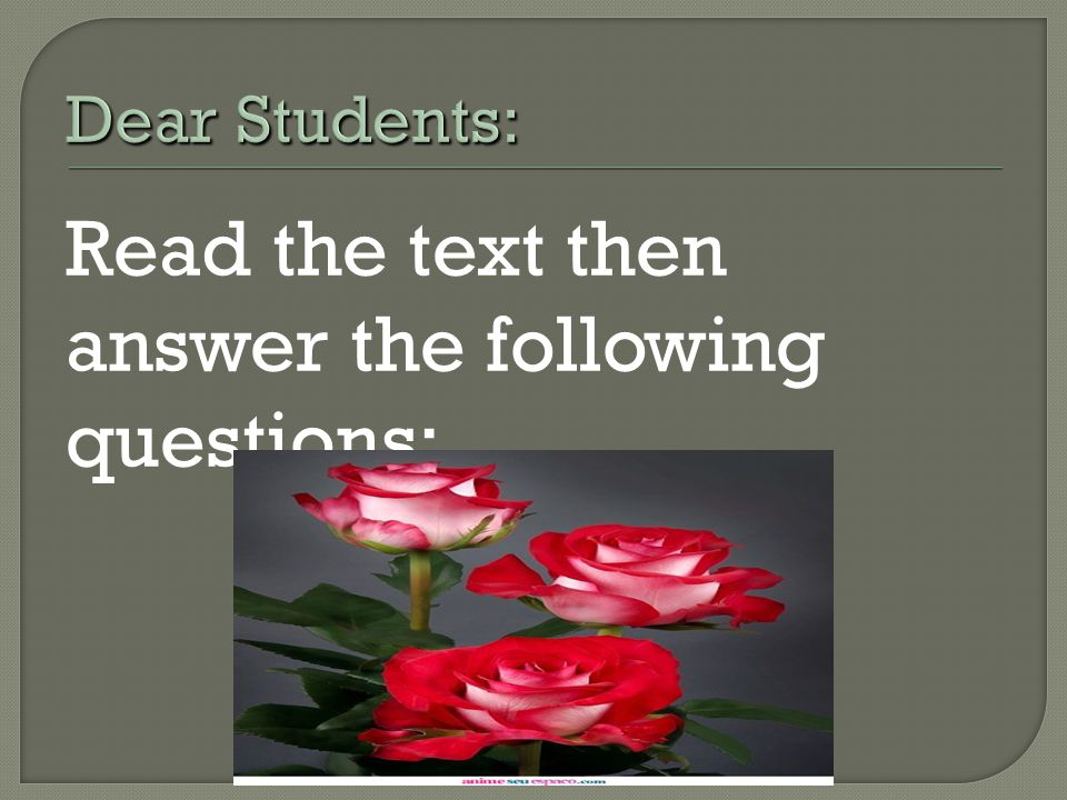 Read the text then answer the following questions: