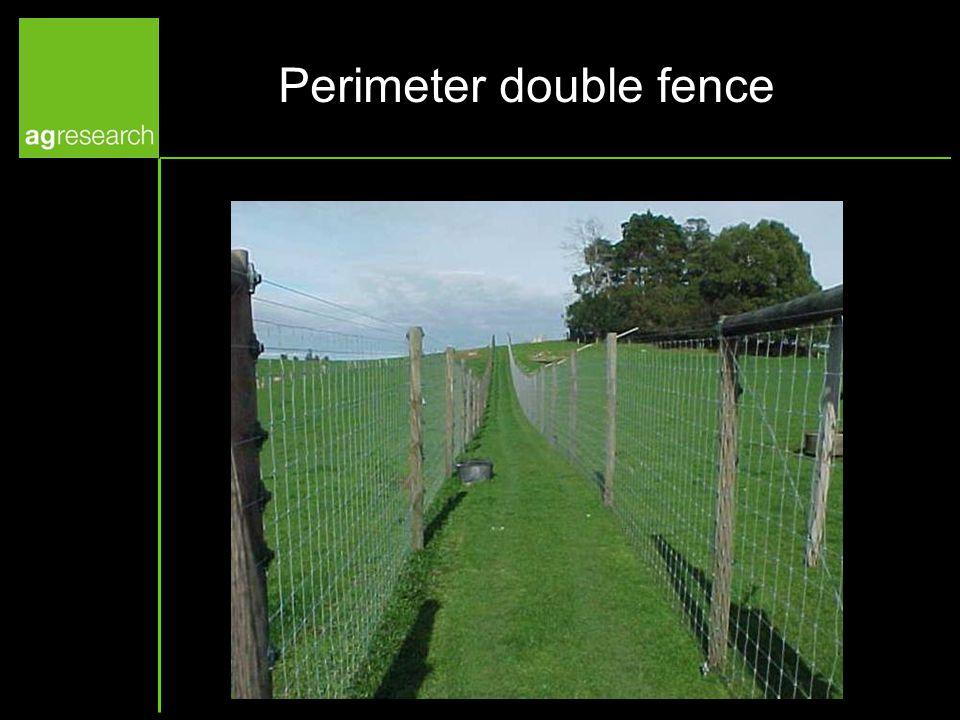 Perimeter double fence