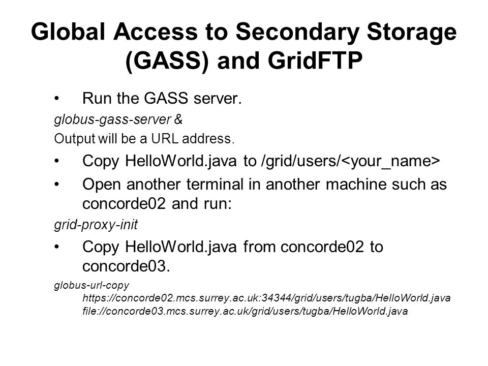 Global Access to Secondary Storage (GASS) and GridFTP Run the GASS server.