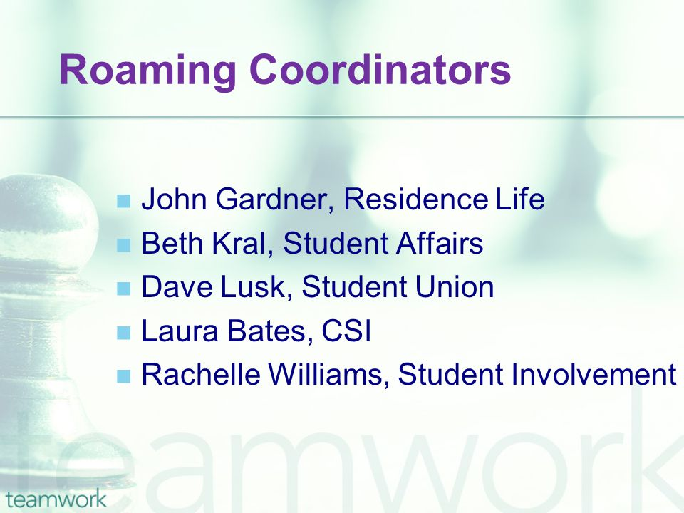 Roaming Coordinators John Gardner, Residence Life Beth Kral, Student Affairs Dave Lusk, Student Union Laura Bates, CSI Rachelle Williams, Student Involvement