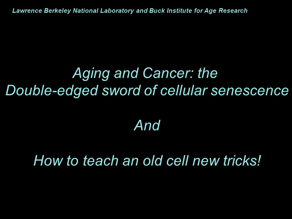 The senescence response is not simply an arrest of cell growth
