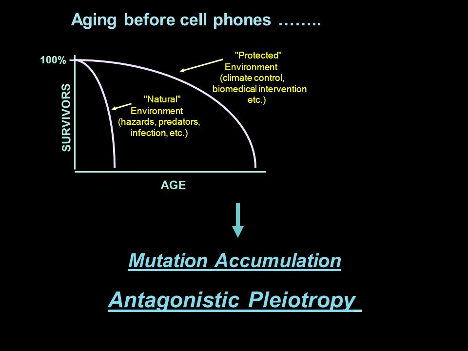 Cellular Senescence: A Gatekeeper Tumor Suppressor Induced by potentially oncogenic stimuli Most tumor cells acquire mutations that abrogate the senescence response Controlled by p53 and pRB -- tumor suppressors inactivated in most tumors Mouse models/human cancer-prone syndromes