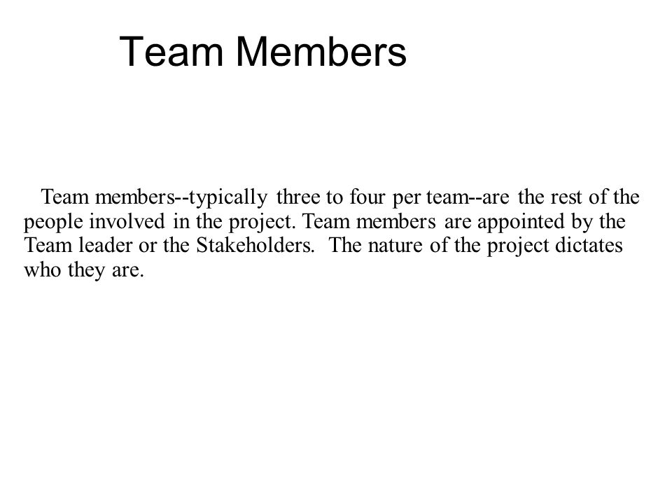 Team members--typically three to four per team--are the rest of the people involved in the project.