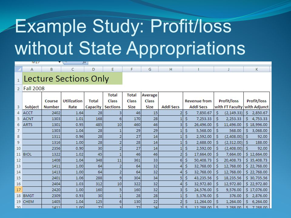 Example Study: Profit/loss without State Appropriations