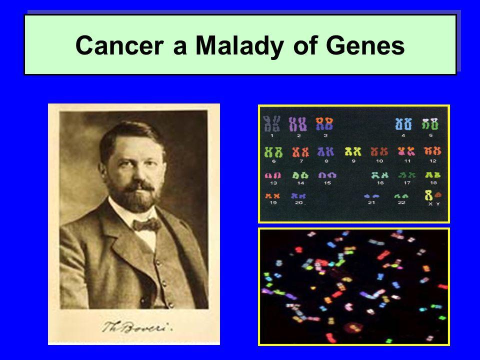 Cancer a Malady of Genes