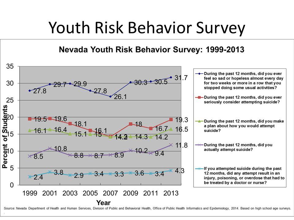 13 Youth Risk Behavior Survey