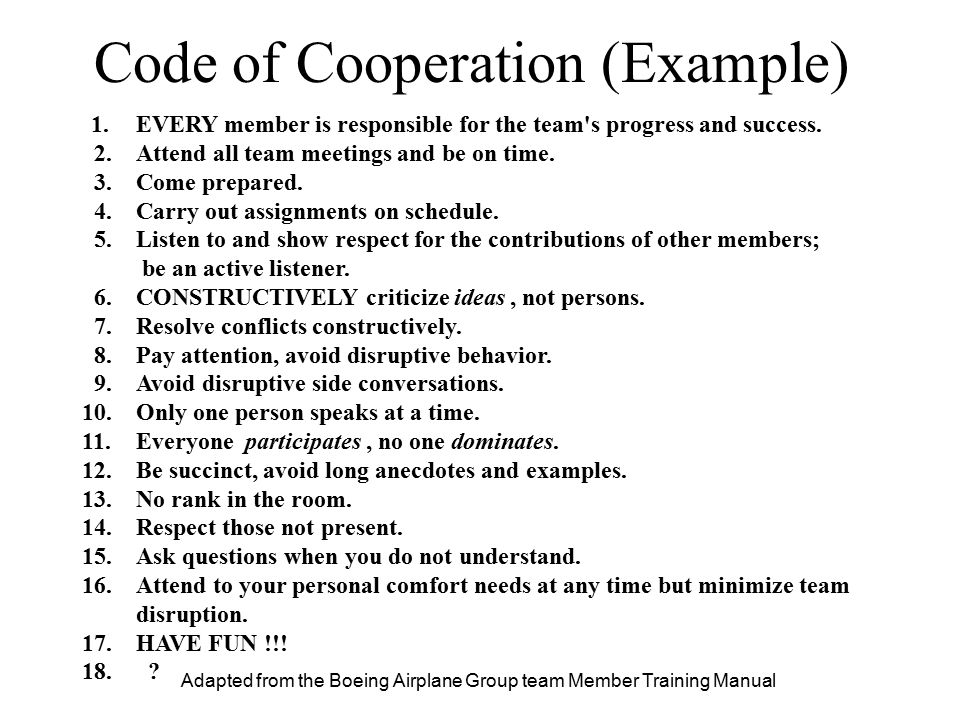 Adapted from the Boeing Airplane Group team Member Training Manual 1.EVERY member is responsible for the team's progress and success. 2.Attend all tea
