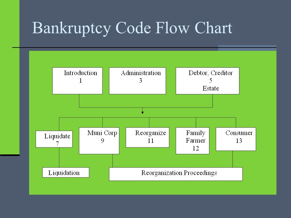Bankruptcy Code Flow Chart