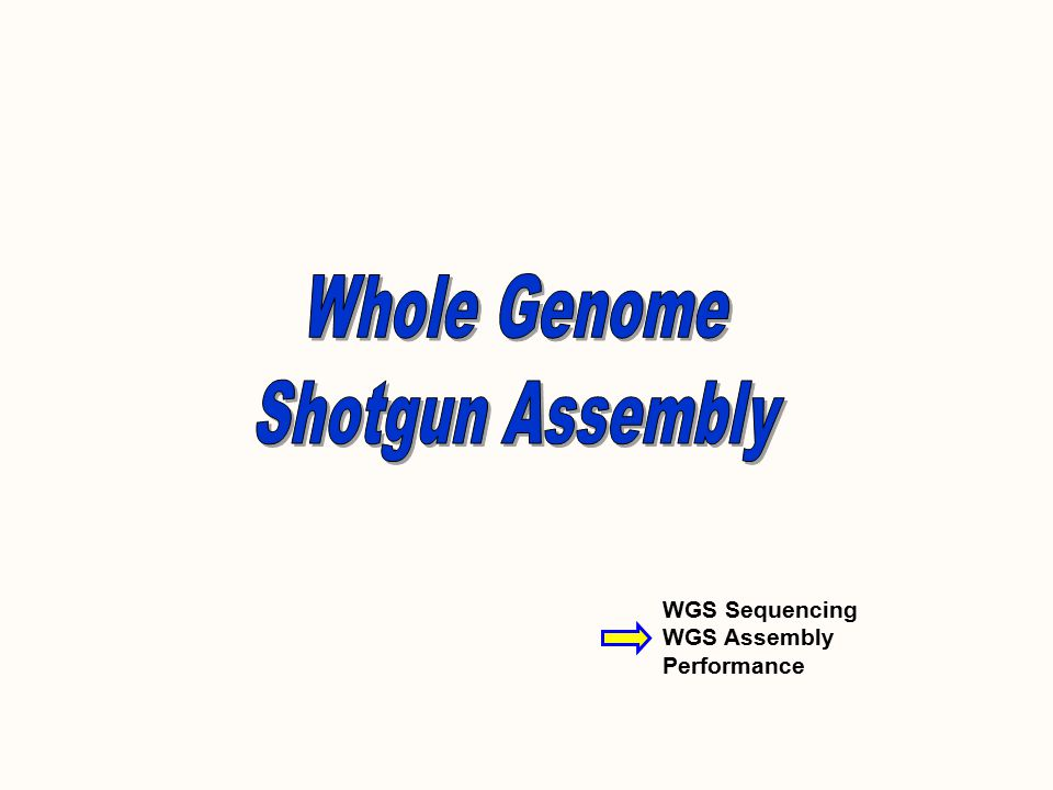 WGS Sequencing WGS Assembly Performance