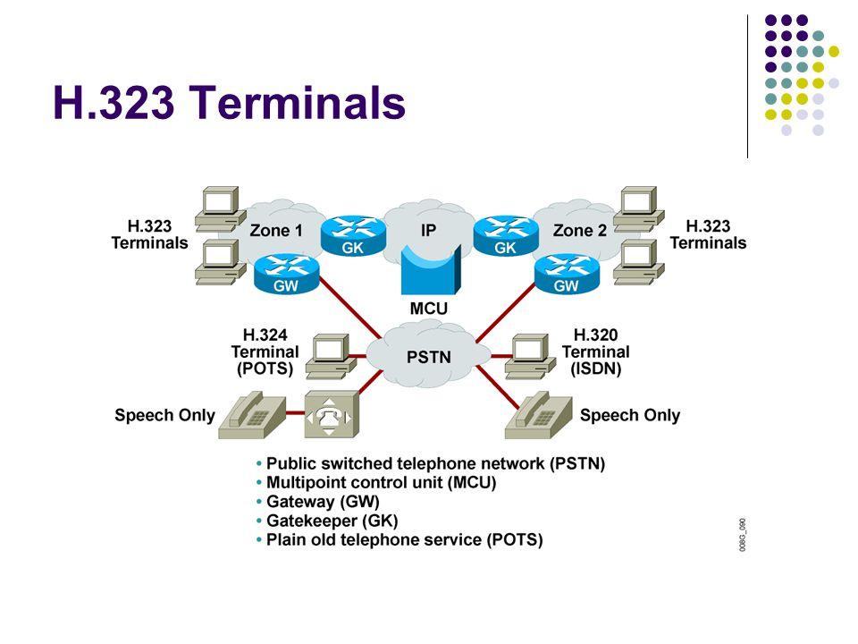 H.323 Terminals