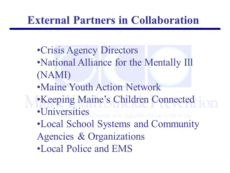 External Partners in Collaboration Crisis Agency Directors National Alliance for the Mentally Ill (NAMI) Maine Youth Action Network Keeping Maine's Children Connected Universities Local School Systems and Community Agencies & Organizations Local Police and EMS