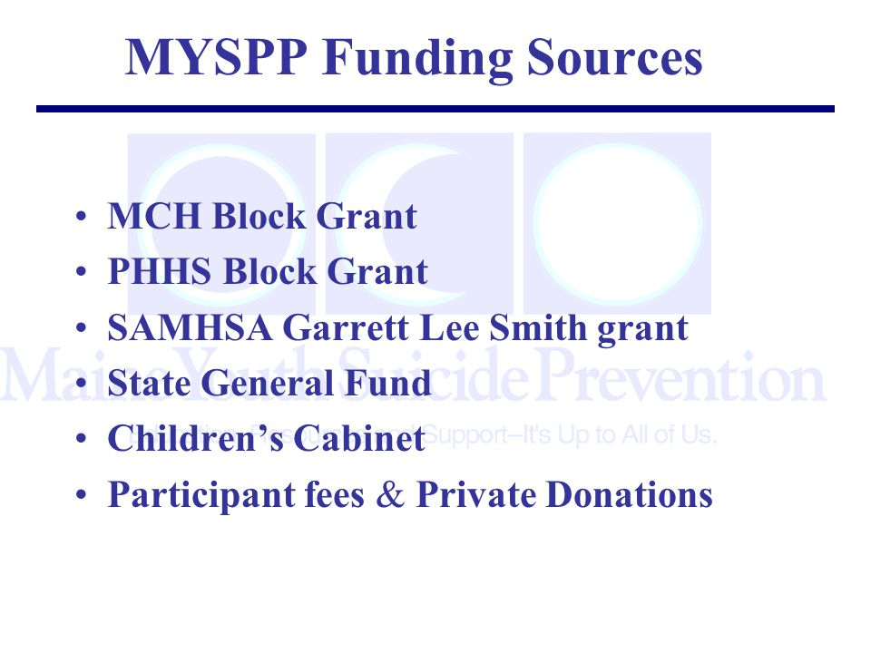 MYSPP Funding Sources MCH Block Grant PHHS Block Grant SAMHSA Garrett Lee Smith grant State General Fund Children's Cabinet Participant fees & Private Donations