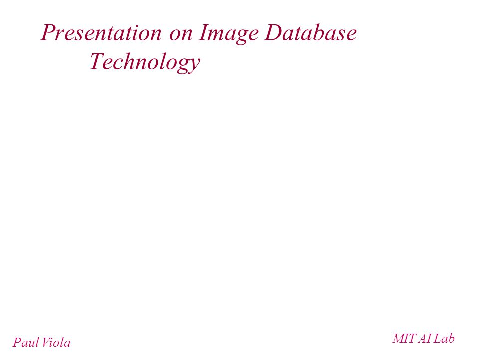 MIT AI Lab Paul Viola Presentation on Image Database Technology
