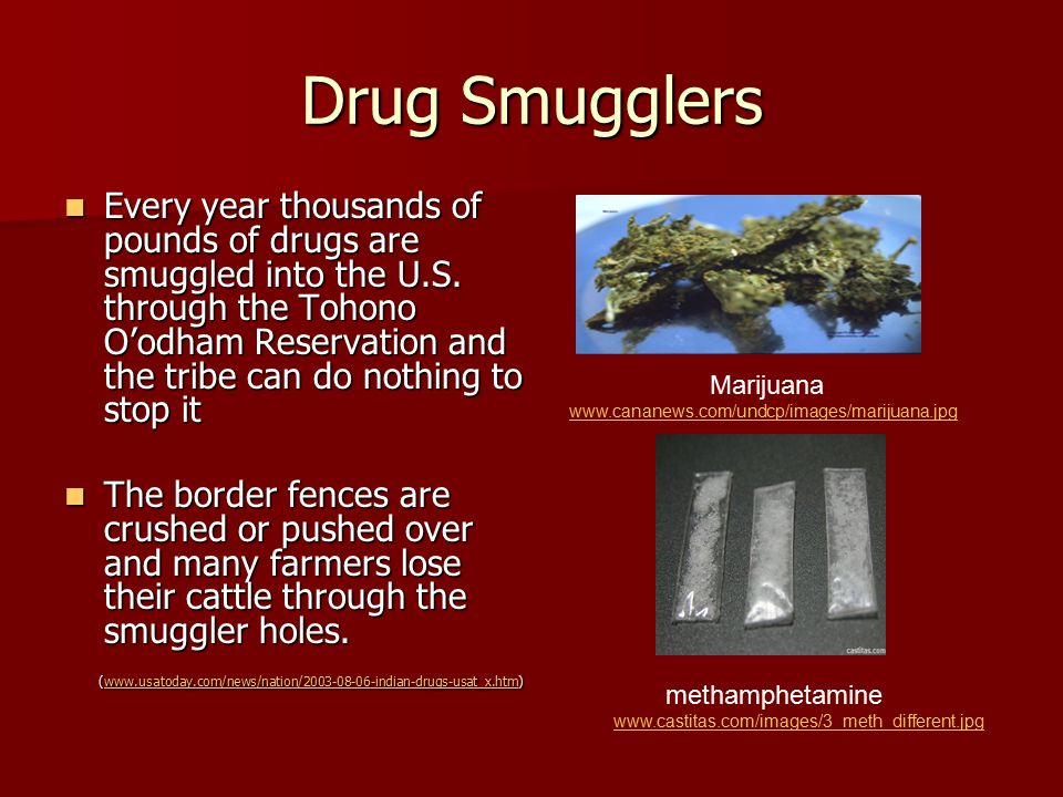 Drug Smugglers Every year thousands of pounds of drugs are smuggled into the U.S.