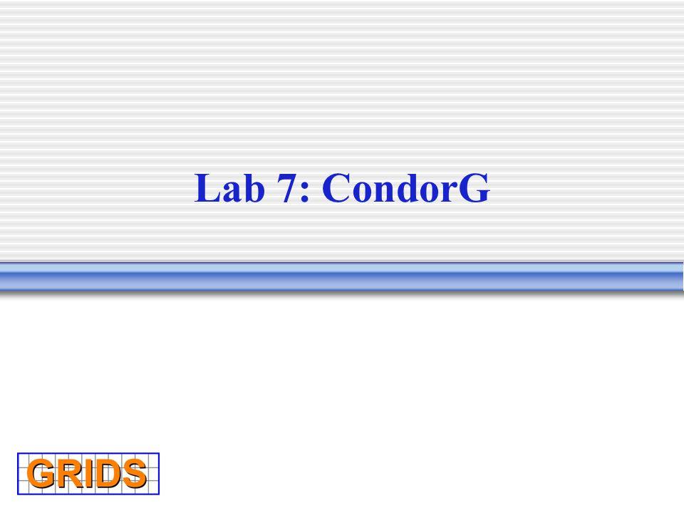 Lab 7: CondorG
