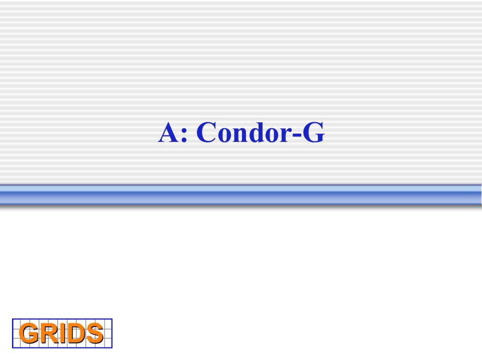 A: Condor-G