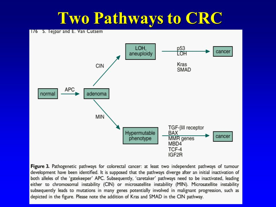 Two Pathways to CRC