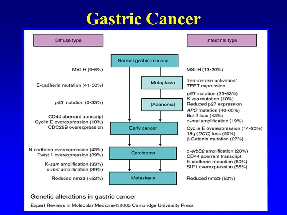 Gastric Cancer Diffuse type – linitis plastica Intestinal type