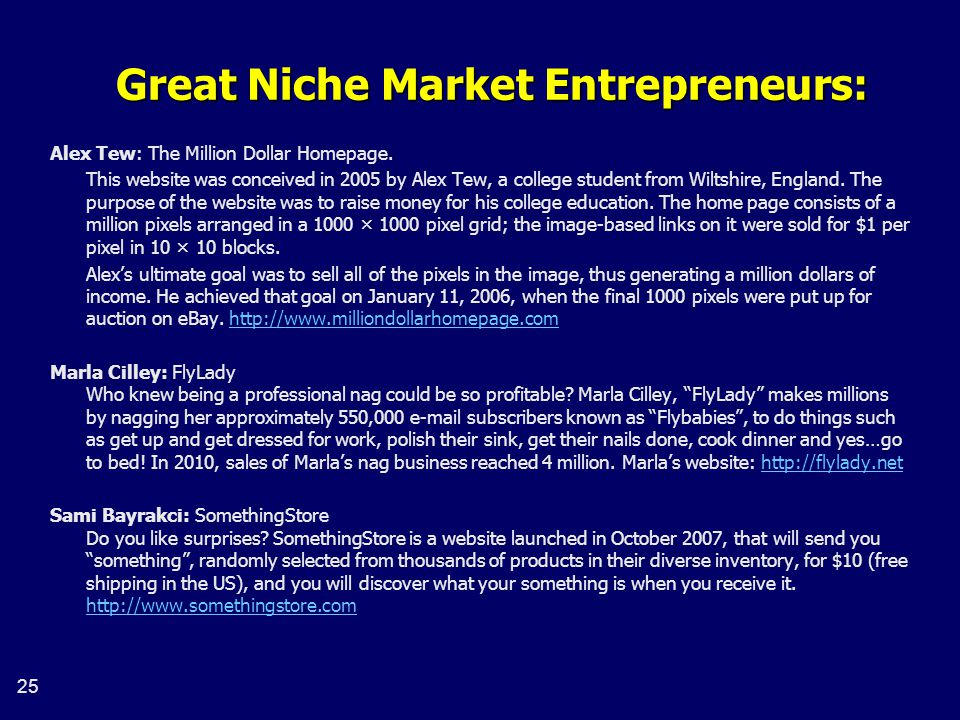 Great Niche Market Entrepreneurs: Alex Tew: The Million Dollar Homepage.