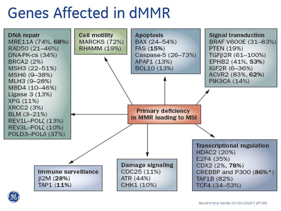 Genes Affected in dMMR Hewish M et al. Nat Rev Clin Onc (2010) 7: 197-208