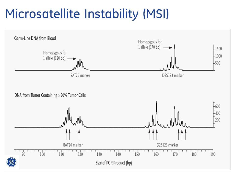 18 Mismatch Repair Deficiency Testing Webinar 4/23/2015 Microsatellite Instability (MSI)