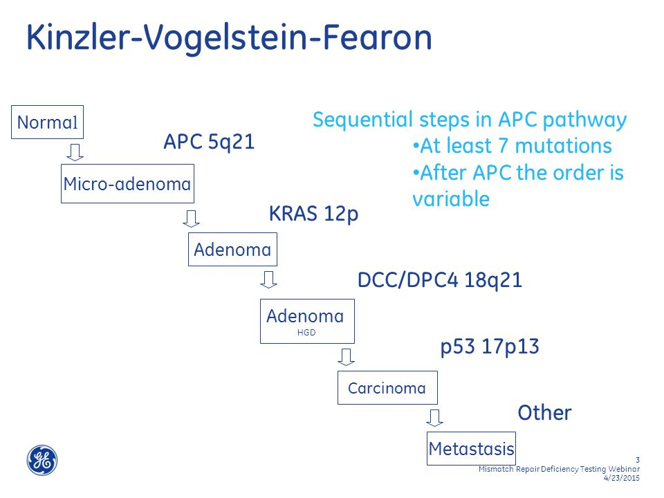 3 Mismatch Repair Deficiency Testing Webinar 4/23/2015 Norma l Micro-adenoma APC 5q21 Adenoma KRAS 12p Adenoma HGD DCC/DPC4 18q21 Carcinoma p53 17p13 Metastasis Other Kinzler-Vogelstein-Fearon Sequential steps in APC pathway At least 7 mutations After APC the order is variable