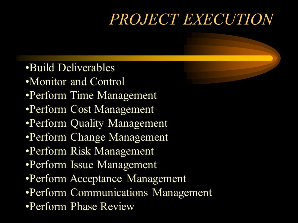 PROJECT EXECUTION Build Deliverables Monitor and Control Perform Time Management Perform Cost Management Perform Quality Management Perform Change Management Perform Risk Management Perform Issue Management Perform Acceptance Management Perform Communications Management Perform Phase Review