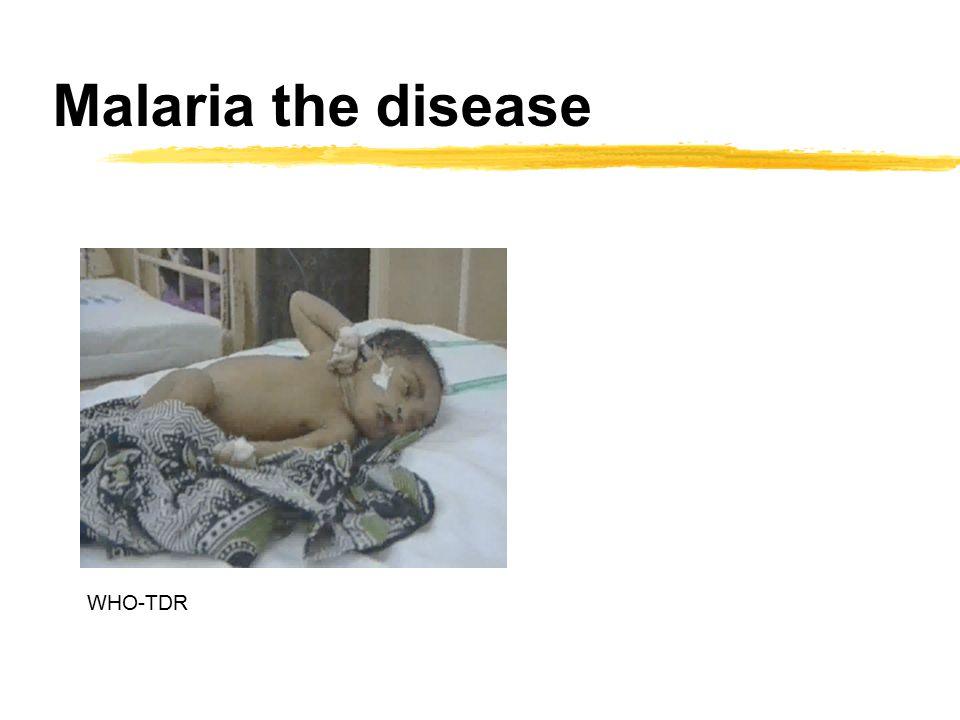 Malaria the disease WHO-TDR