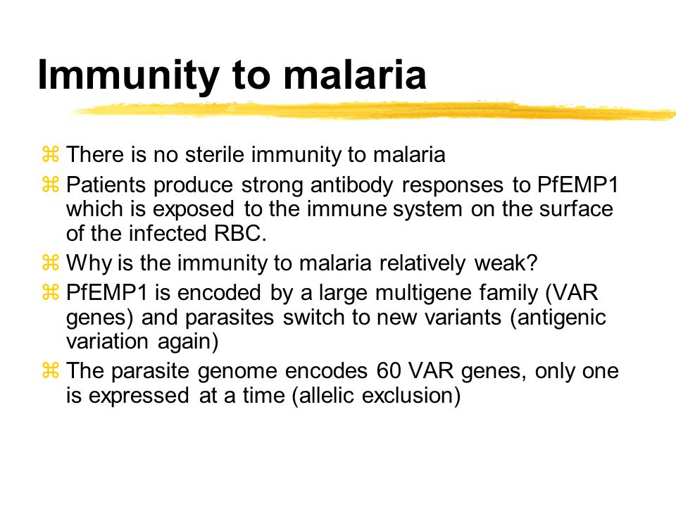 Immunity to malaria zThere is no sterile immunity to malaria zPatients produce strong antibody responses to PfEMP1 which is exposed to the immune syst