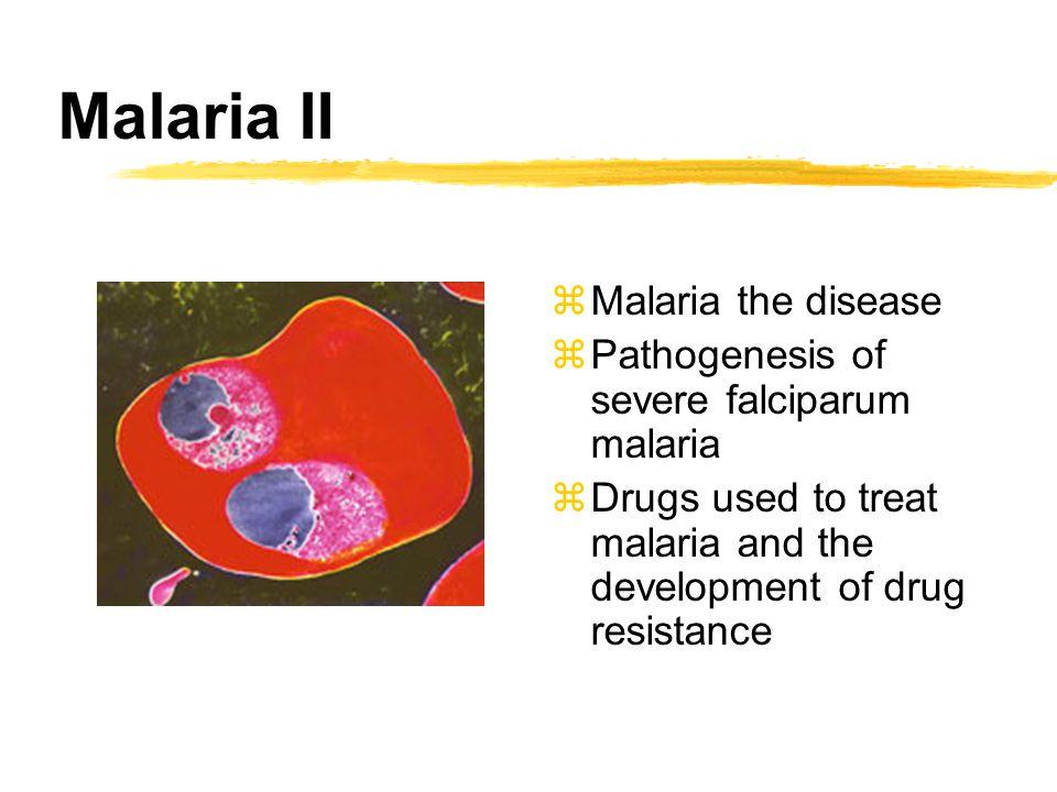 Malaria II zMalaria the disease zPathogenesis of severe falciparum malaria zDrugs used to treat malaria and the development of drug resistance