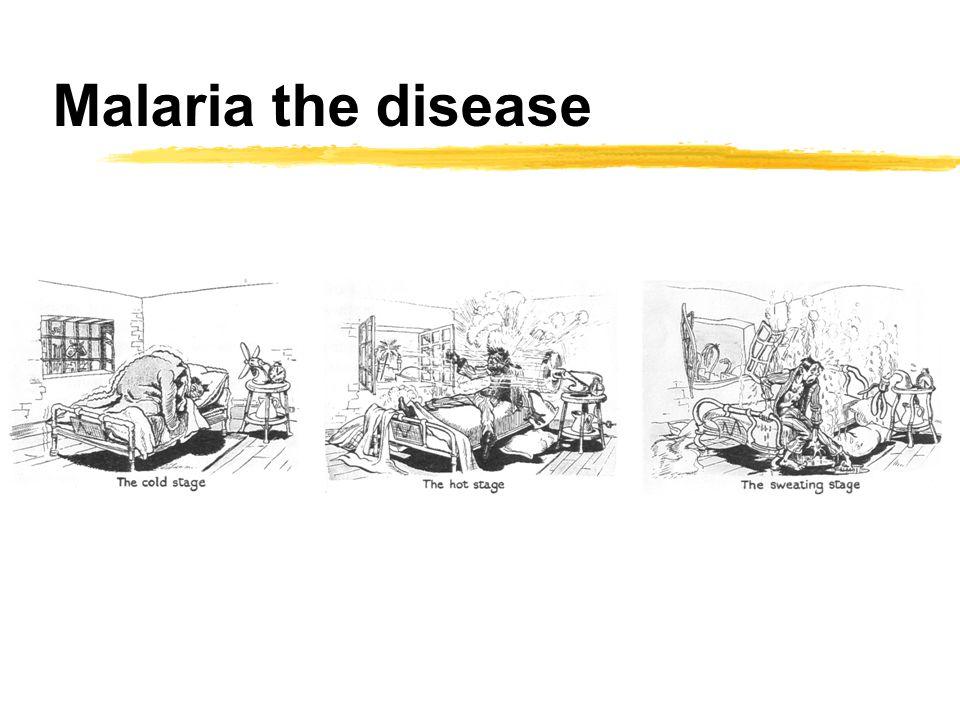 Malaria the disease