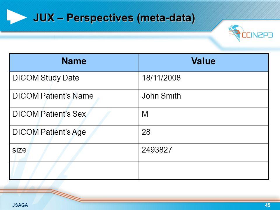 JSAGA45 JUX – Perspectives (meta-data) NameValue DICOM Study Date18/11/2008 DICOM Patient's NameJohn Smith DICOM Patient's SexM DICOM Patient's Age28