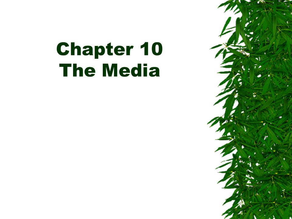 Chapter 10 The Media