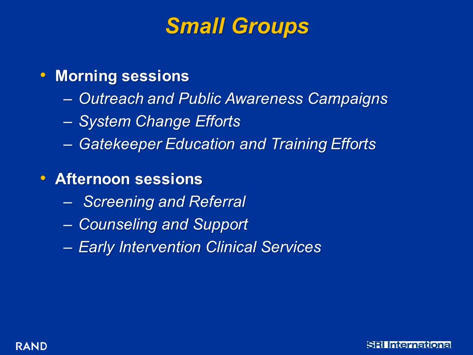Small Groups Morning sessions Morning sessions –Outreach and Public Awareness Campaigns –System Change Efforts –Gatekeeper Education and Training Efforts Afternoon sessions Afternoon sessions – Screening and Referral –Counseling and Support –Early Intervention Clinical Services