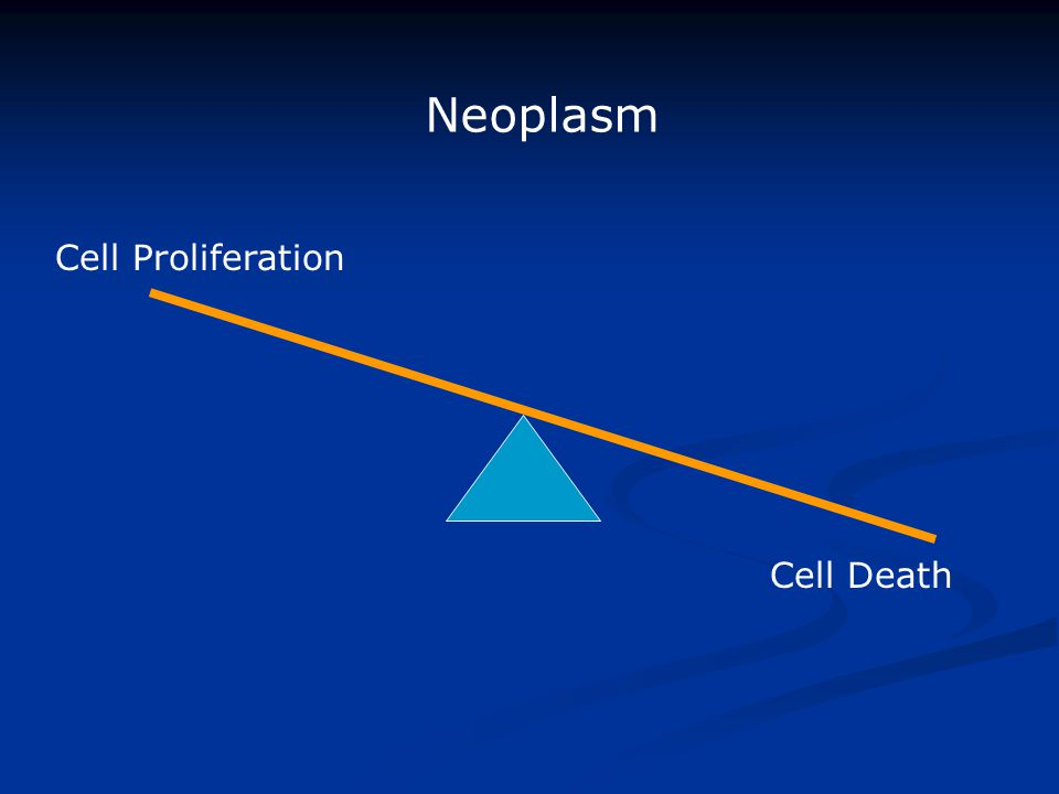 Cell Proliferation Cell Death Neoplasm