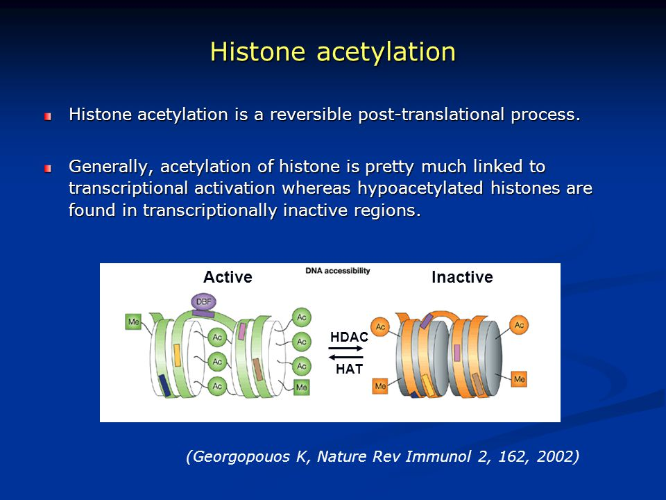 Histone acetylation Histone acetylation is a reversible post-translational process. Generally, acetylation of histone is pretty much linked to transcr