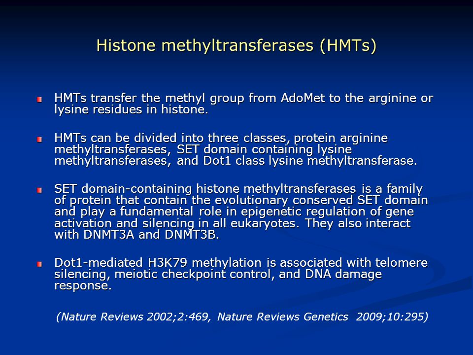 Histone methyltransferases (HMTs) HMTs transfer the methyl group from AdoMet to the arginine or lysine residues in histone. HMTs can be divided into t