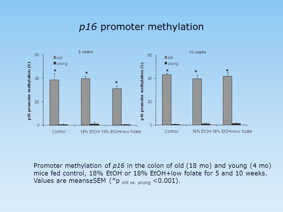 p16 promoter methylation * * * * * * Promoter methylation of p16 in the colon of old (18 mo) and young (4 mo) mice fed control, 18% EtOH or 18% EtOH+l
