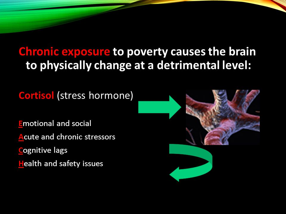 Chronic exposure to poverty causes the brain to physically change at a detrimental level: Cortisol (stress hormone) Emotional and social Acute and chronic stressors Cognitive lags Health and safety issues